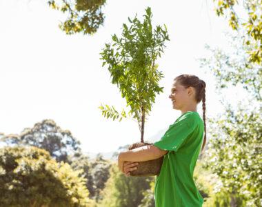 Transresind apoia a Campanha 'Mais Árvores em Flores da Cunha'